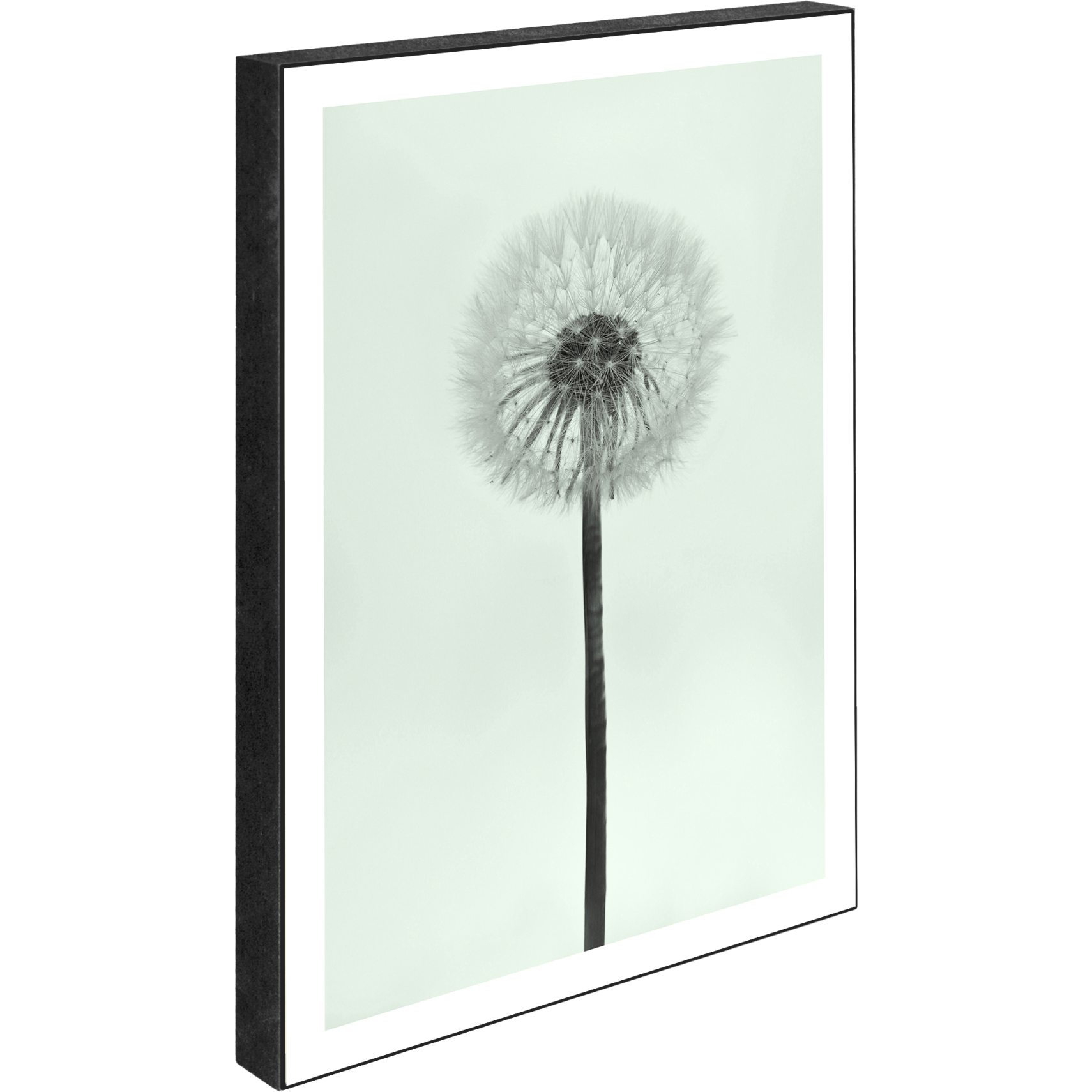 Blocks Skylt 15 x 21 x 2 cm - Dandelion - blue